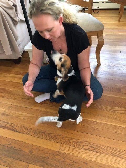 Animal Reiki and Animal Communication - Califon, NJ