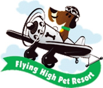 Flying High Pet Resort - Camarillo, CA