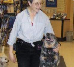 Barclay Farms, Professional Dog Training -  Conroe, TX