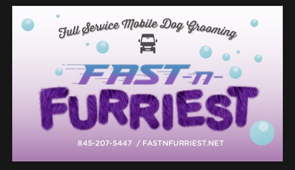 Mobile Pet Grooming - Danbury, CT
