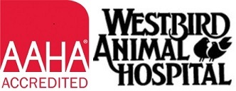 Westbird Animal Hospital, Inc. - Miami, FL