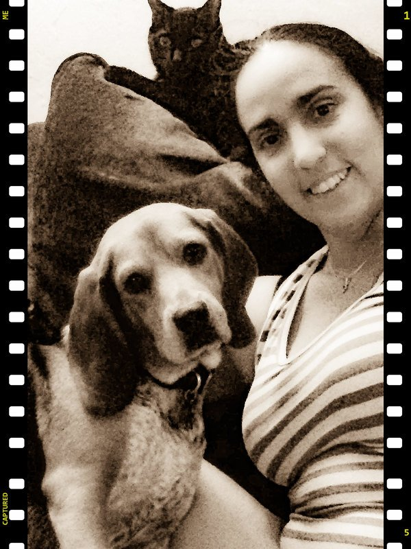 #1 Dog training in Gainesville, FL