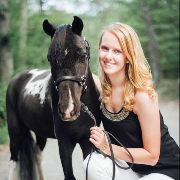 Revitalizing Equine Services - Sharon, MA