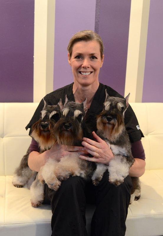 Best In Show Doggy Daycare, Board & Groom - Atlanta, GA