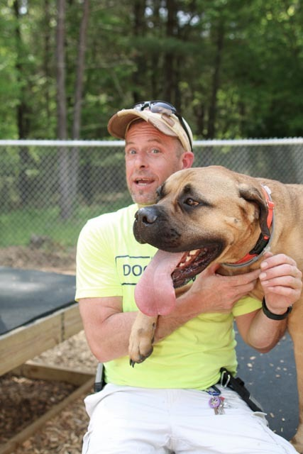 All-Natural Canine Behavioral Training - New England