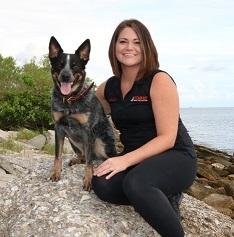 Steadfast dog training