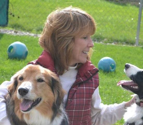 Companion Canines - Kalkaska, MI