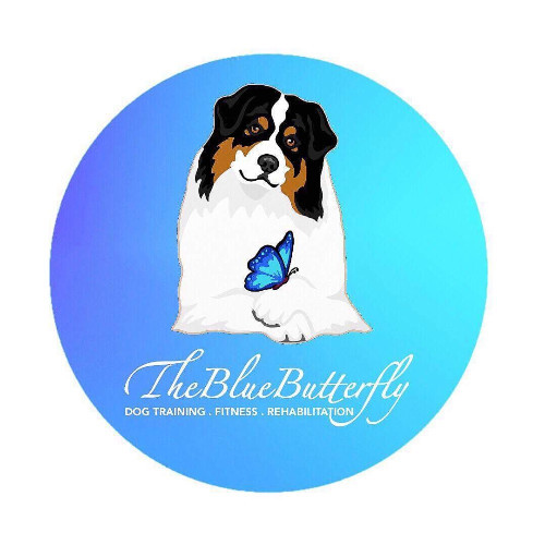 The blue butterfly dog