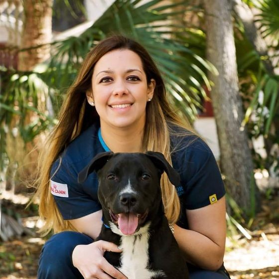 Red Diggity Dog - Tampa, FL