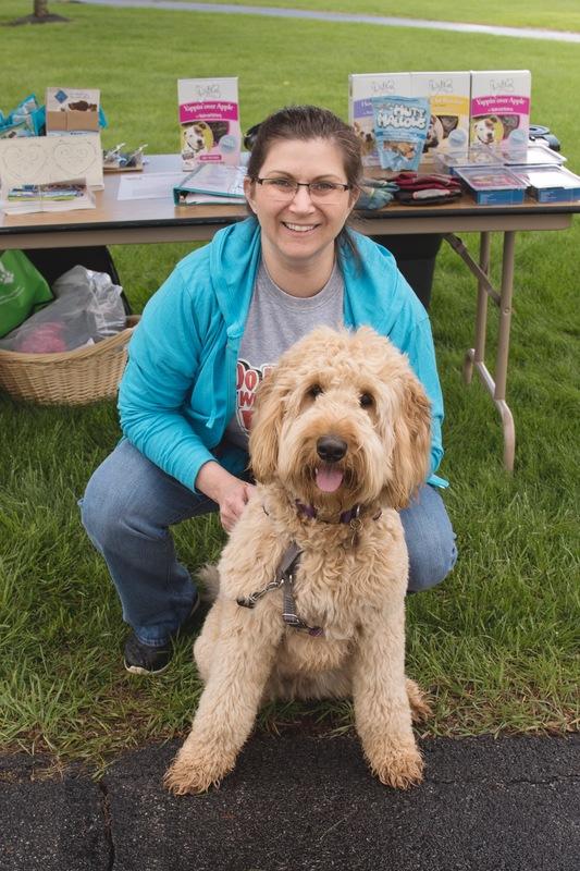 Group & Private Dog Training  - New Hartford, NY