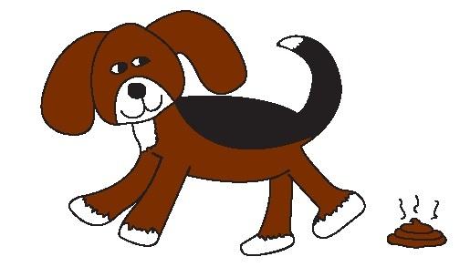Dog Doody Duty- Dog Waste Clean-Up & Removal  - Minoa, NY