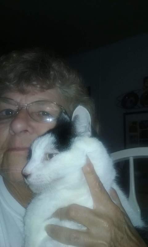 Linda G.'s Pet Sitting - Palmetto, FL