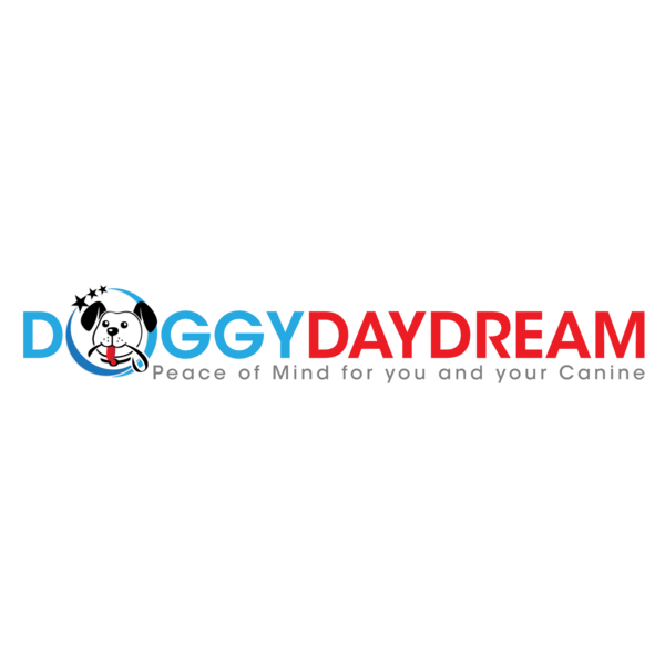 Cage Free Dog Daycare & Dog Boarding - Prospect Heights, IL