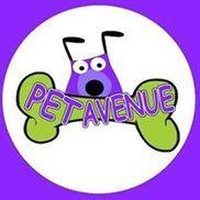 Pet Avenue Grooming & Boarding - Miami, FL