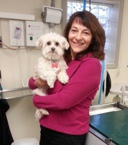 Schoedinger Pets Memorials & Cremation Services - Columbus, OH