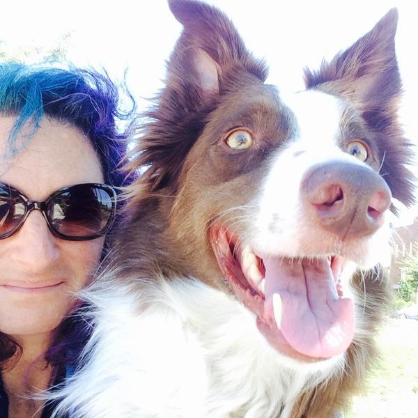 Stacy's Wag'N'Train dog training services - San Jose, CA