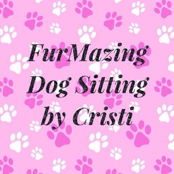 FurMazing Dog Sitting By Cristi  - Fort Mill, SC