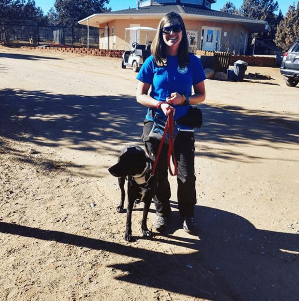Tenacious Dog Training - Harrisburg, SD