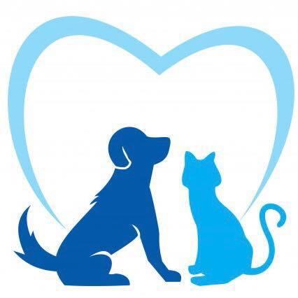 Cny pet care   profile