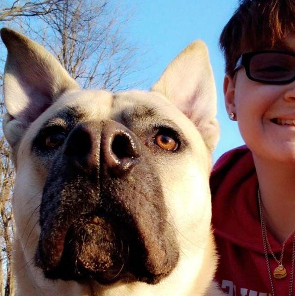 Ariel's Dog/Cat Sitting - Martinsville, IN