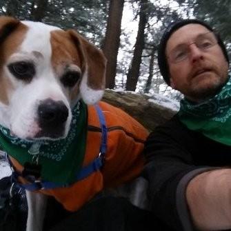 Green Bandana Dogs - Burlington, VT