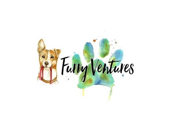 Furry Ventures Pet Care - Tampa, FL