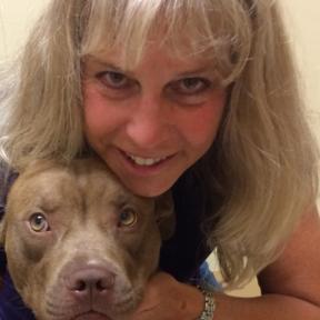 Artemis Dog Massage
