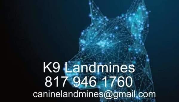 K9 Landmines  - Joshua, TX