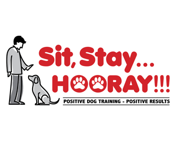 Sit, Stay... HOORAY!!! - Loganville, GA