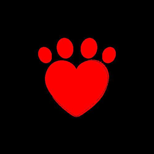 Hot Paws Pet Care - New York, NY