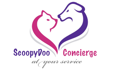 Weekly Service Clean Up for one Dog - Phoenix, AZ