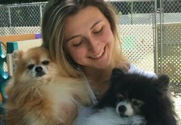 All Good Dogs Daycare & Boarding - Monmouth Junction, NJ