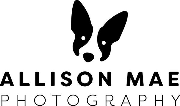 Allison Mae Photography - Denver, CO