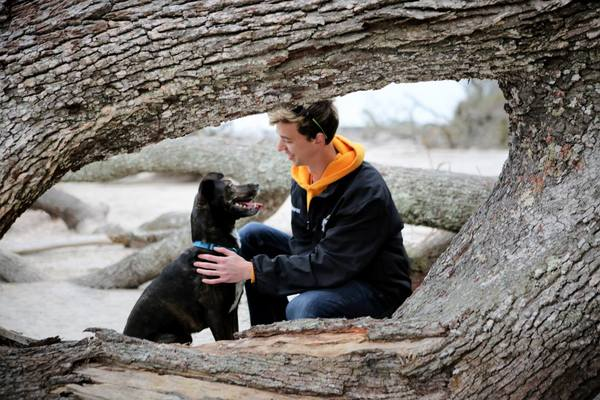 Professional Dog Training in Pittsburgh