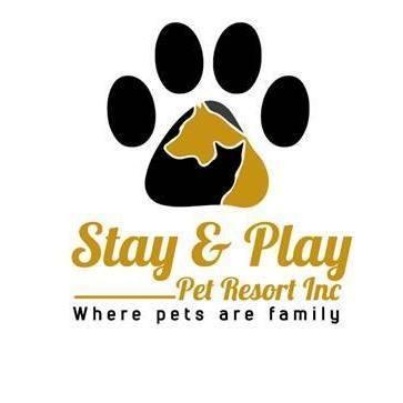 Stay & Play Pet Resort  - Huntingdon Valley, PA