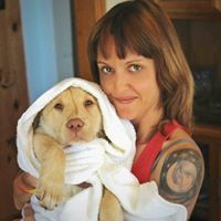 Service Dog Training & Lifestyle Coaching - Kern County, CA