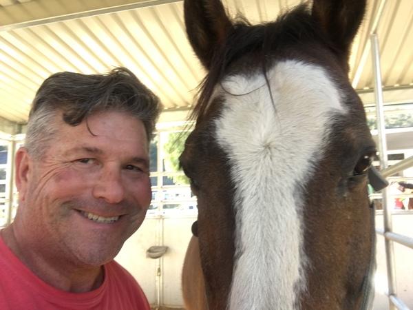 Pack Leader Training & Equine Sports Massage