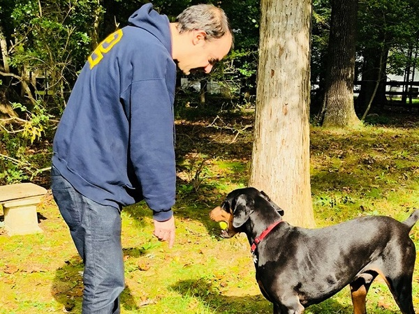 Tom's Dog Training - Bethesda, MD