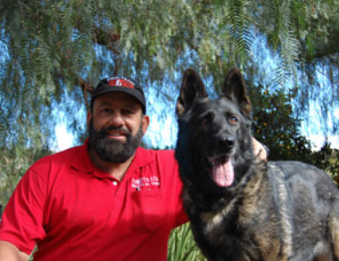 Pro-Train Professional Dog Training Consultation - Vista, CA