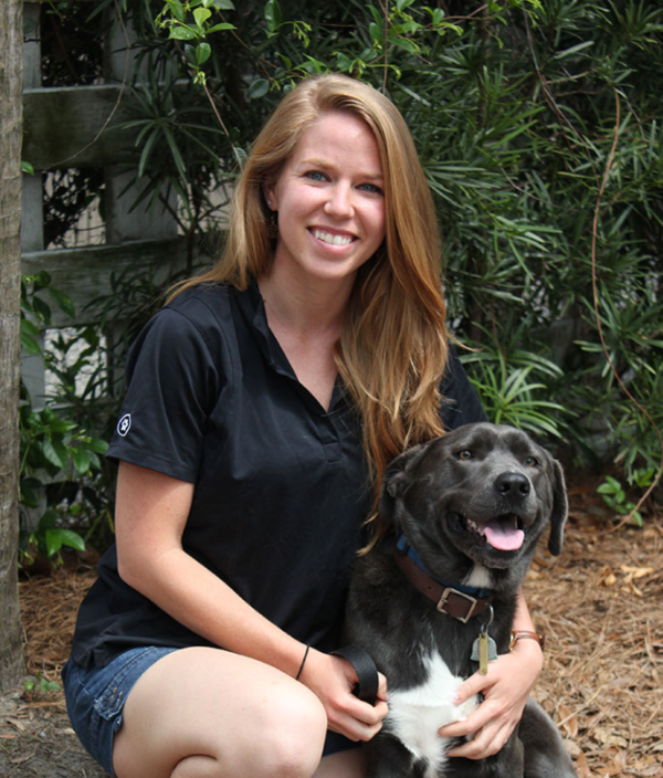Bright Mind Canine Services - Charleston, SC
