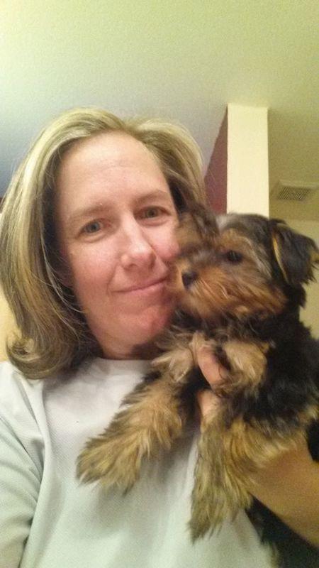 Domestic and International Pet Relocation - Phoenix, AZ