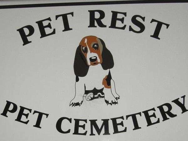 Pet rest