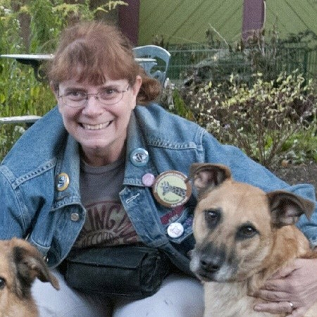Holly Dain In Home Pet Sitter - Franklin Park, IL