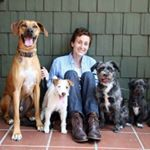 Excellent & Reliable Dog Walking & Pet Sitting - Los Angeles