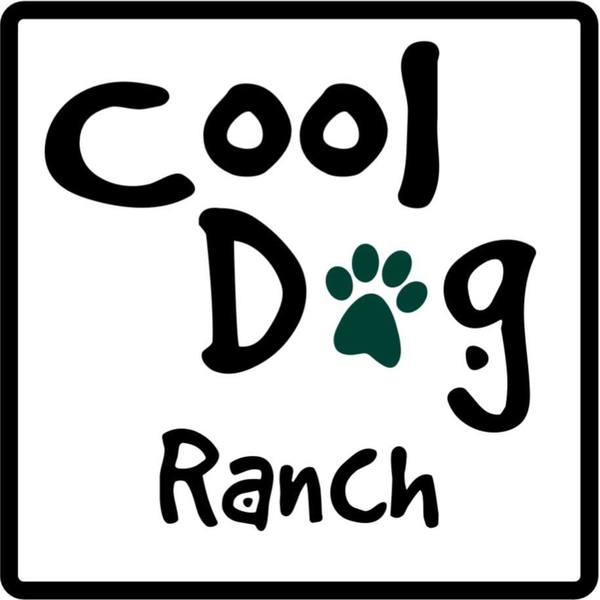 Cool dog ranch