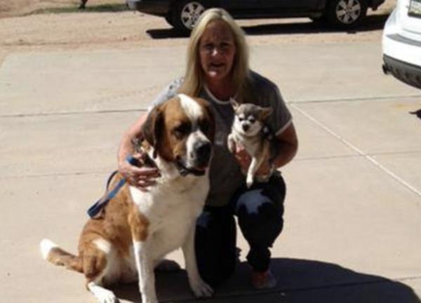 Animal Lover Pet Sitting - Scottsdale, AZ