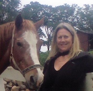 Connecticut Equine Therapy, LLC - Naugatuck, CT