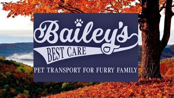 Bailey's Best Care Pet Transport  - Clarksville, AR
