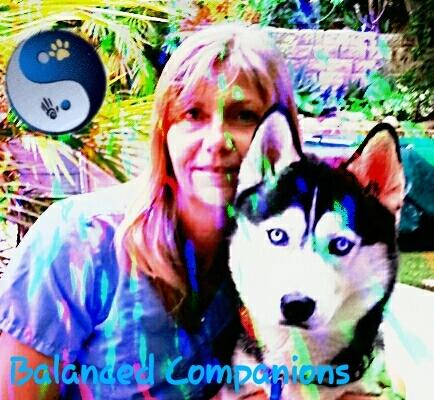 Balanced Companions - Ventura, CA