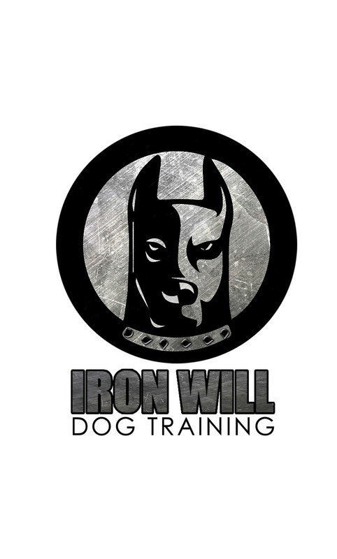 Iron Will Dog Training - Covington, GA